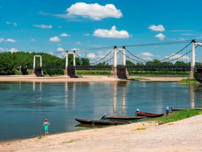 ©D.Drouet-2719-Loire-Montjean-pont