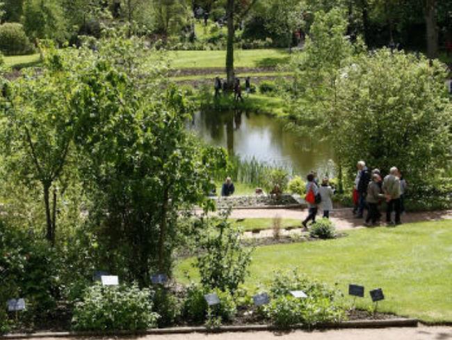 vue-du-jardin-camifolia-portrait-PCU49