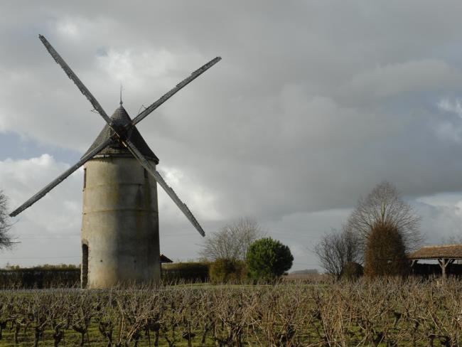 rando-la-cour-tillières